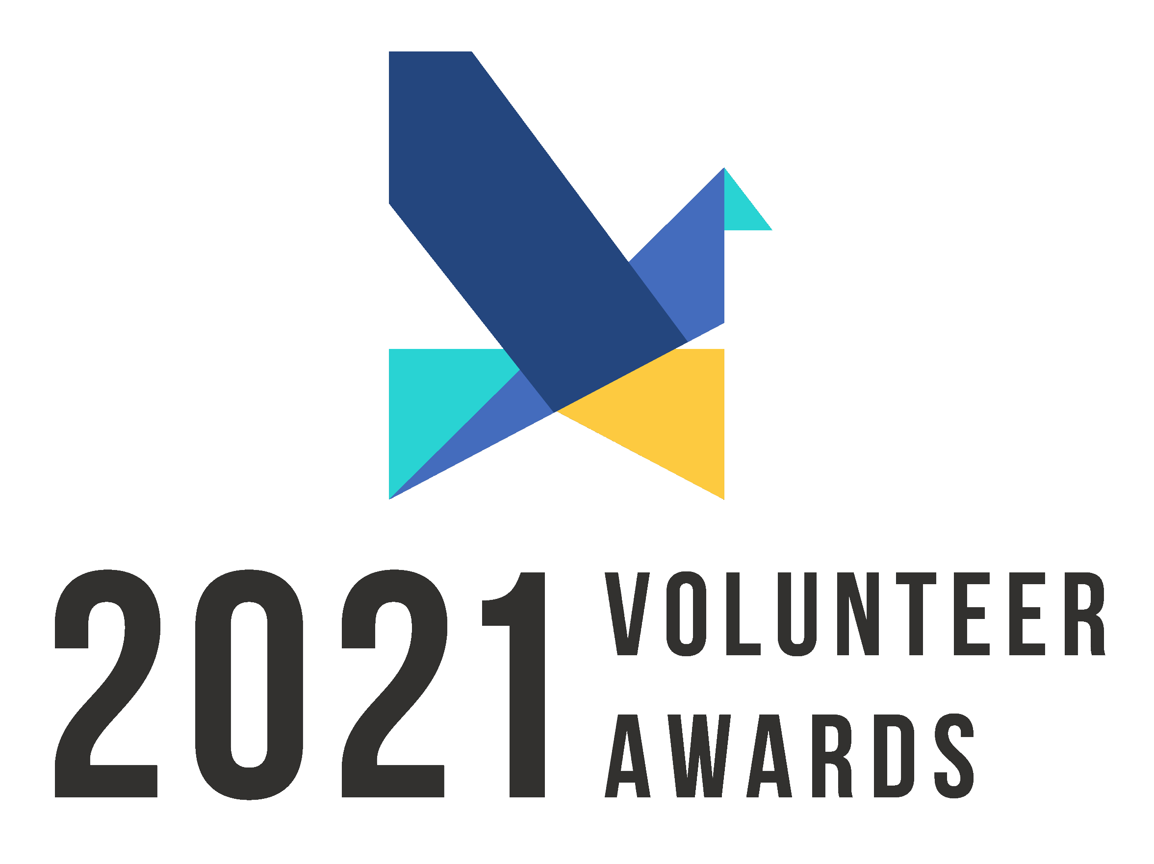 Volunteer Awards 2021 Logo